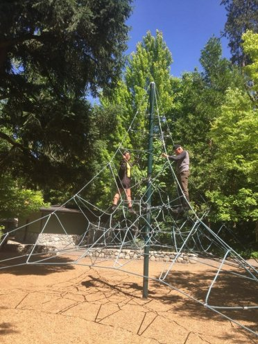 2018-06-22 rope tower in lithia park571727511..jpg